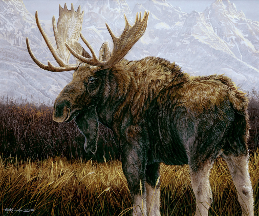Mark Slawson Moose