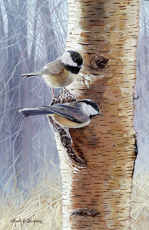 Chickadee Birch